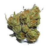 budtenders of dc trainwreck swiss indica 170